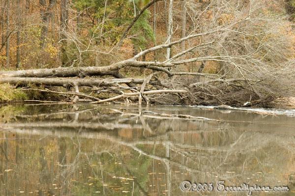 Sweetwater Creek Georgia