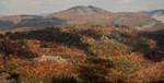 Blue Valley Overlook outside Highlands, NC 10/24/10