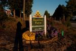 Sunrise Farms Bed & Breakfast 10/22/10 - 10/24/10